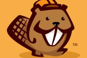 How To Create A Custom Header With Beaver Builder In Genesis